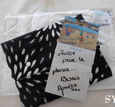 La pochette de soins d' Amélie et son porte-cartes