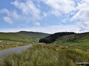 A travers le parc national des Monts Wicklow