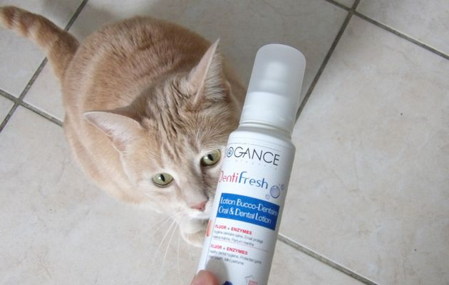 Oliver a testé le spray dentifresh de Biogance