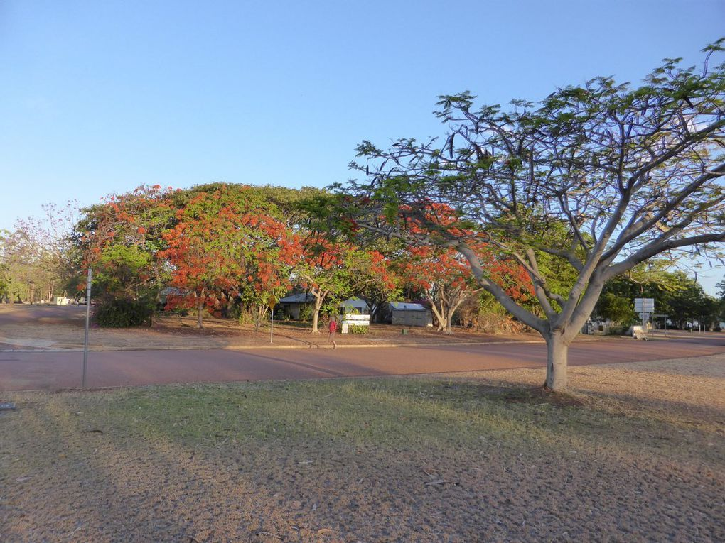 J37 - L'outback