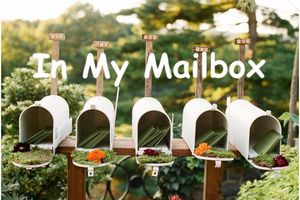 In My Mailbox (351)
