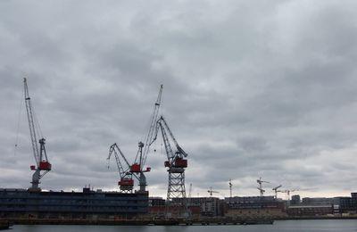 Finlande : Grasse mat'