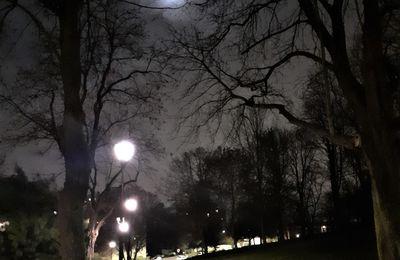 Balade sous la lune