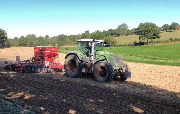Semis de couvert après ensilage de maïs 🌽