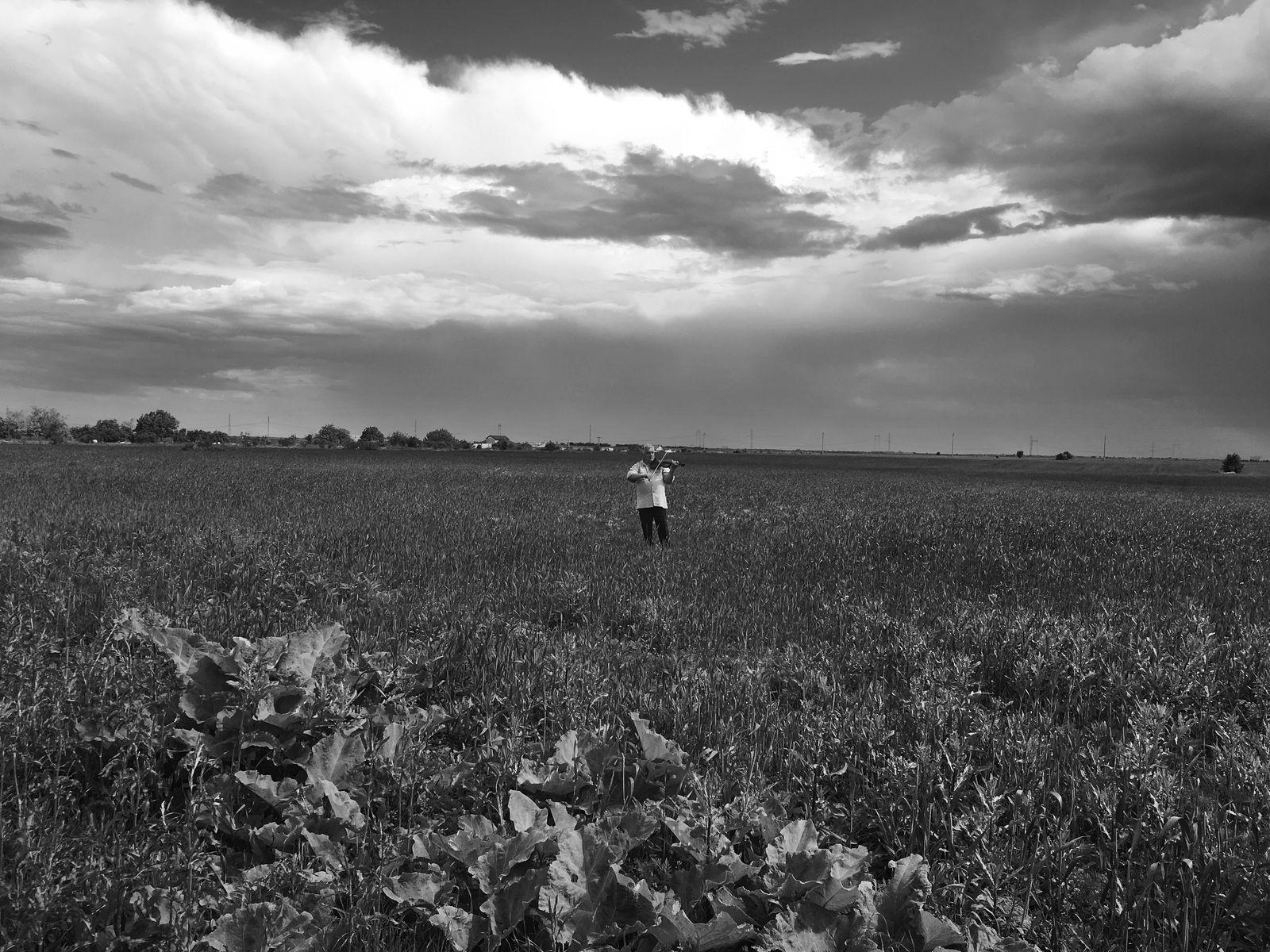 TRIO (BANDE-ANNONCE) Documentaire de Ana Dumitrescu - Le 16 septembre 2020 au cinéma