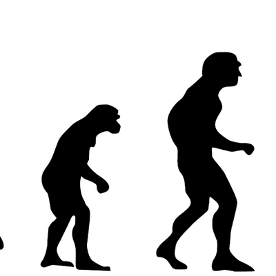 L'évolution darwinienne pour les nuls