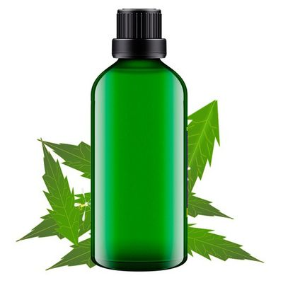 A Journey for Healthy & Smooth Skin Begins with Neem Carrier Oils