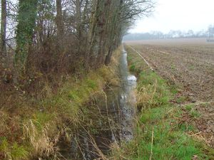 Excess of water at the corners of the field, edge and intraplot ditches