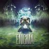Enigma - Demise of Autonomy