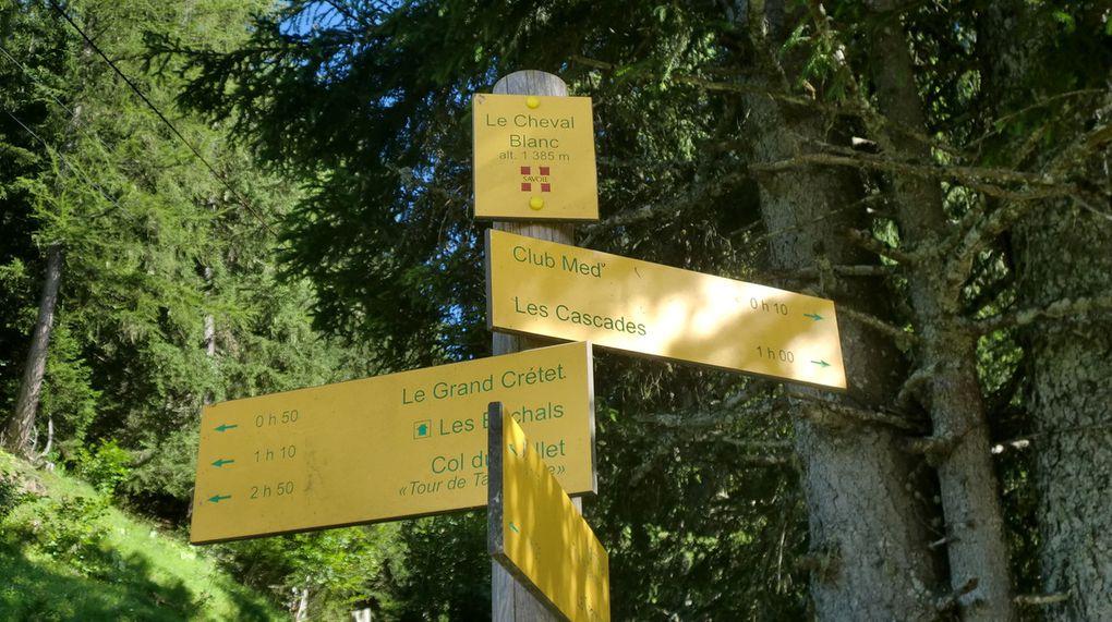 La dernière partie de notre randonnée se fait à travers des pâturages au son des clarines sur un superbe sentier sinueux.