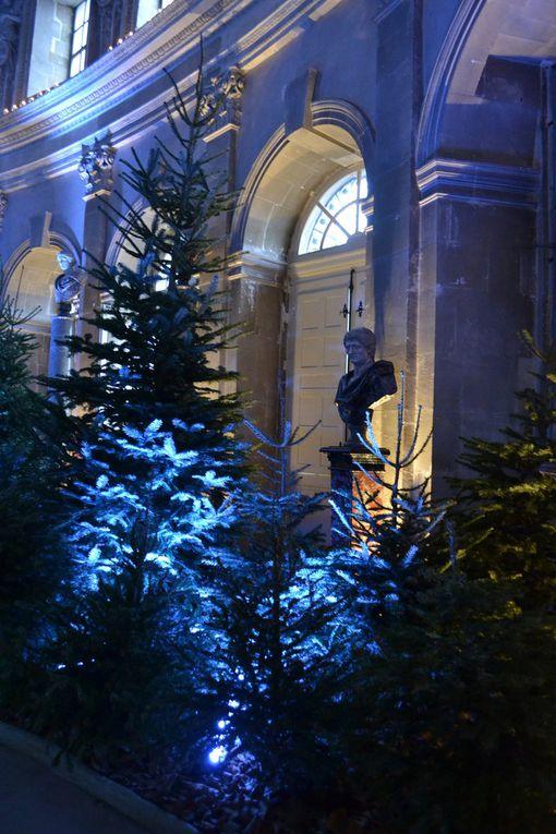 LA MAGIE DE NOEL AU CHATEAU DE VAUX LE VICOMTE (77) - DECEMBRE 2016