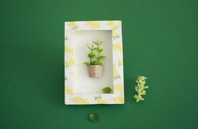 Fabriquer un mini cadre végétal