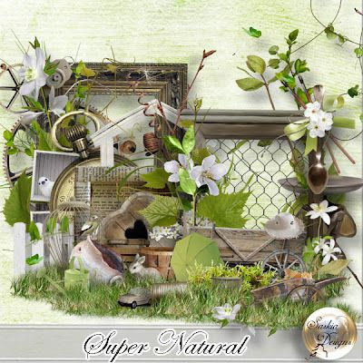 New!!! Super Natural + Bundle Products by saskia's design