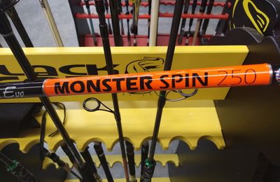 "Canne Volkien Monster Spin 250 ""Bluffante"" à moins de 100€"
