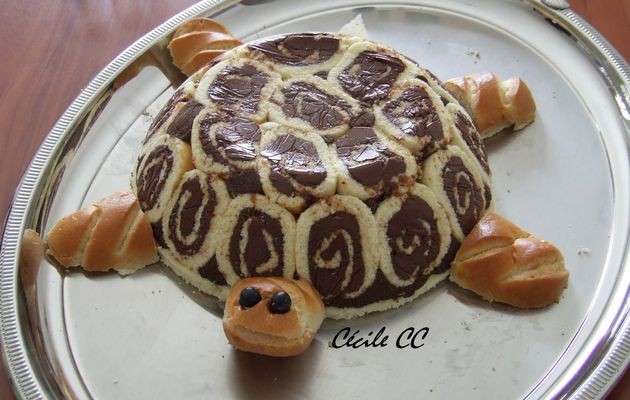 Un drôle de tortue....