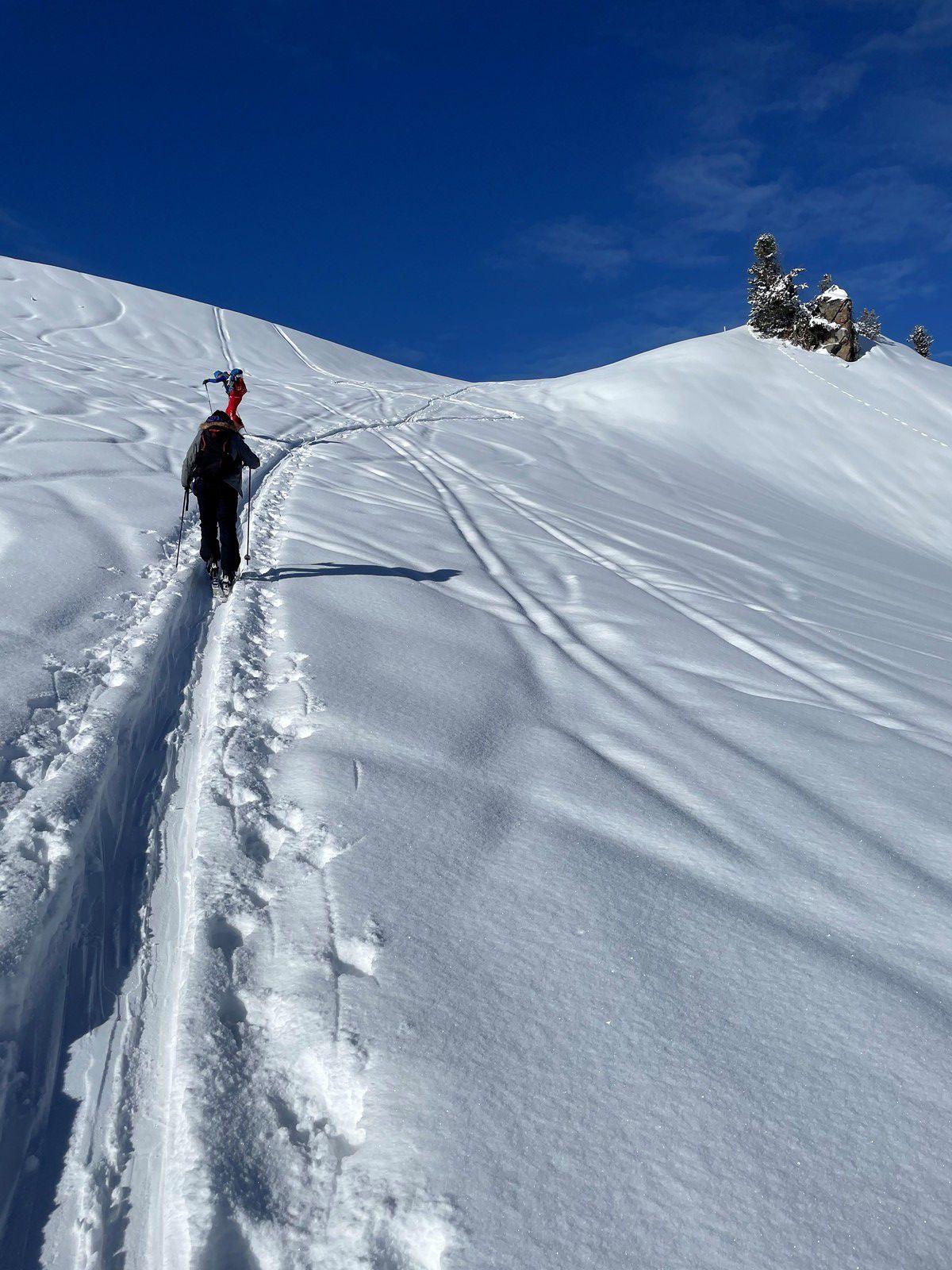 Ski de randonnée: l'activité sportive et nature
