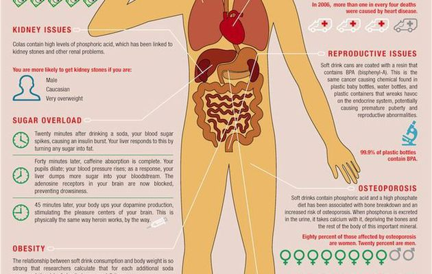 Good Eating Facts -- Trans Fat And Soda Get up Tips