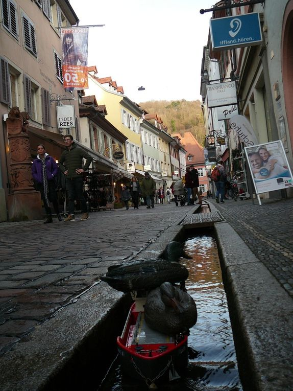 Fribourg jour 1