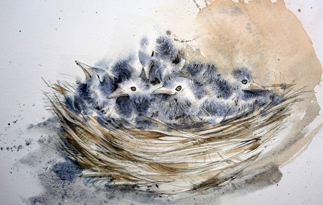 Franck Rollier expose au Landes aquarelle festival du 12 au 20/09/2020 à Morcenx 40110