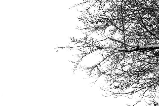 les gîtes du Belvédère de choriol sous la neige.