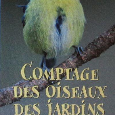 23 & 24 Janv. 2015 : 7e COMPTAGE DES OISEAUX DE JARDINS
