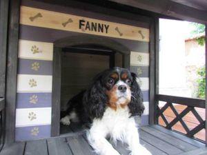 Je customise la niche de Fanny !