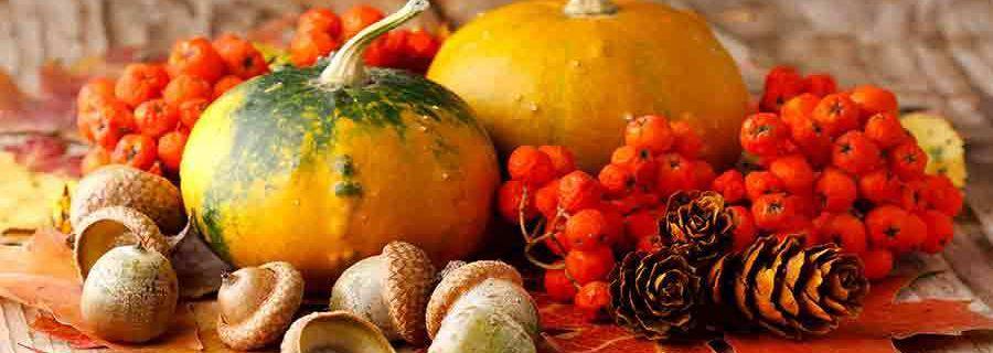 Les produits du terroir d'automne