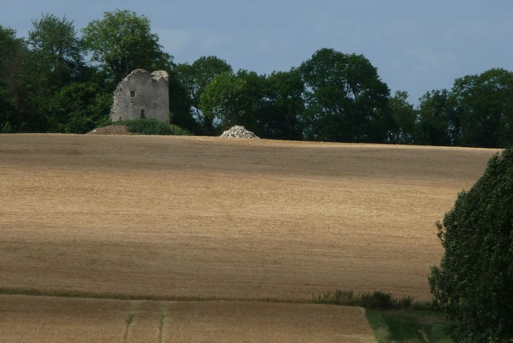 Album - 2010.-La-moisson-au-moulin-de-Roucy