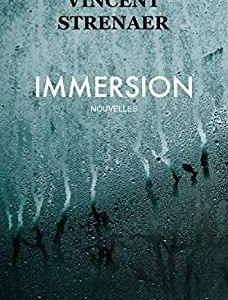 Avisthriller : Immersion de Vincent STRENAER (Autoédition)