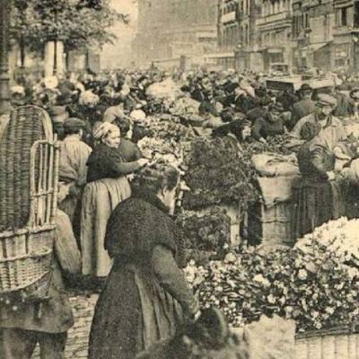 Marchés spéciaux à Paris  fin 1800 - début 1900