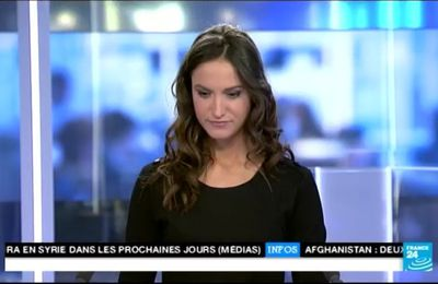 2014 01 12 - MARION GAUDIN - FRANCE 24 - LE JOURNAL
