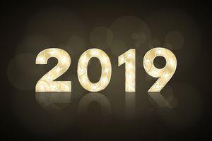 Bilan des tournois 2019 (Partie 2) : Le nombre de tournois et leur fréquentation