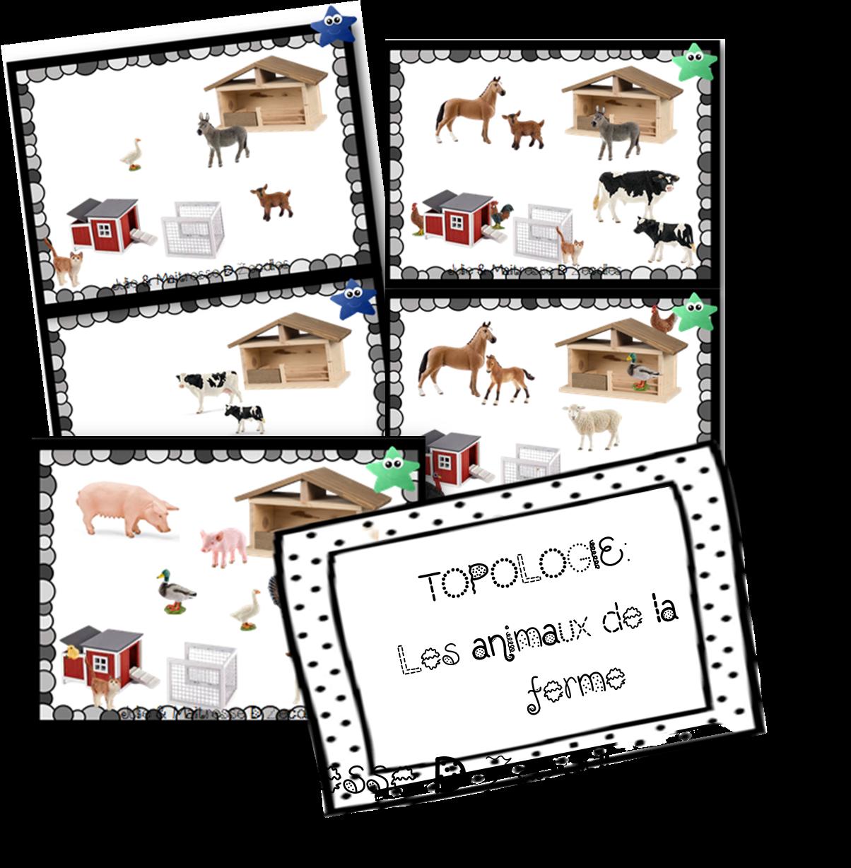 Animaux de la ferme : Topologie