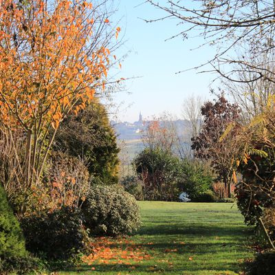 Balade en novembre au jardin