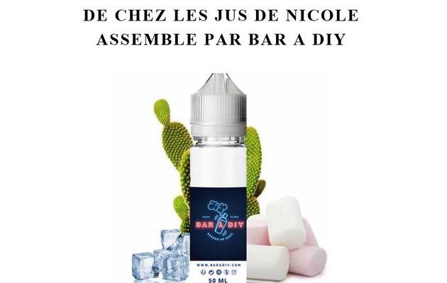 Test - Eliquide - Cactus Cryo de chez Les Jus De Nicole