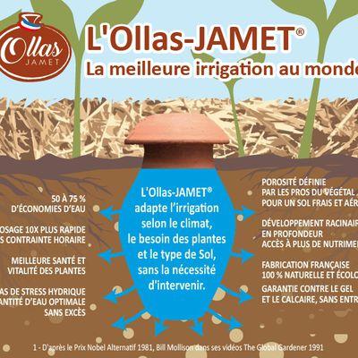 Les OLLAS, un système d'irrigation millénaire hightech !