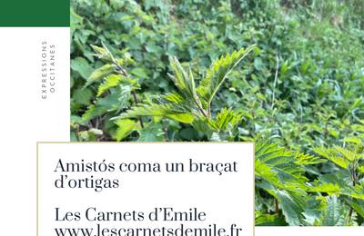 Lauragais d'Autrefois (125) : expressions occitanes des petits et gros défauts