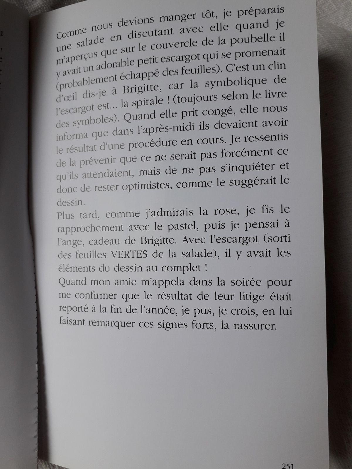 """Suite Pluie de Poussières d'Etoiles, page 247 à 254, dont début du chapitre """"Le chanteur et les Anges"""""""