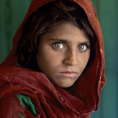 Galerie Polka - Exposition photo virtuelle Steve McCurry