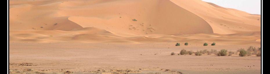 Les dunes de Merzouga, Maroc