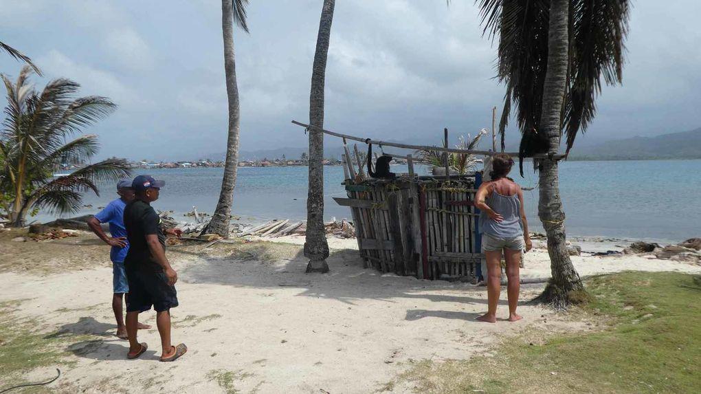 Walaladup :l'île aux Singes
