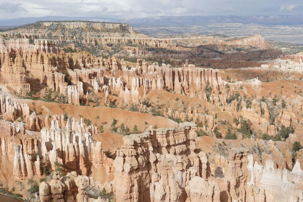 Album - Bryce-Canyon