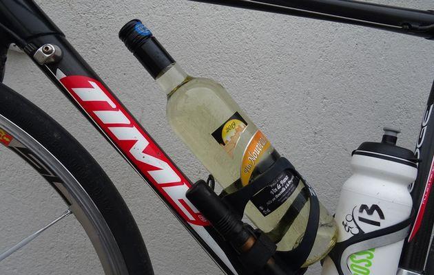 Sortie cyclos et vins primeurs, à Cavanac