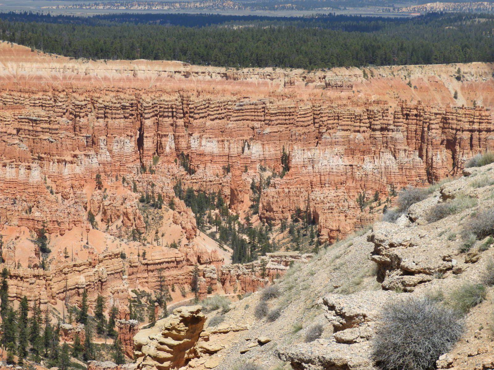 Un couple et une moto dans le Wild West américain 08 jour -  De Tropic, Parcs Bryce Canyon, Red Canyon et Zion à ST George Utah