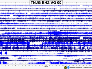 Anak Krakatau - seismograms of 31.12.2019 and 01.01.2020 - Doc. Magma Indonesia - one click to enlarge