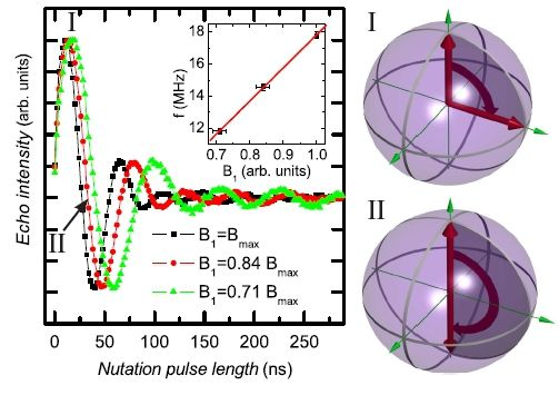 Rabi oscillations obtained by recording the echo intensity as a function of nutation pulse length. For two positions in the Rabi cycle the corresponding path on the Bloch sphere is shown on the right..................... Direct Observation of Quantum Coherence in Single-Molecule Magnets