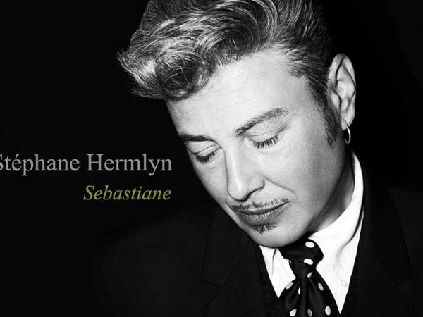 stéphane hermlyn, un musicien français qui fut punk avant de devenir technicien en studio et régisseur