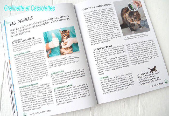 La vie Secrète des Chats, le Guide Pratique du chat heureux