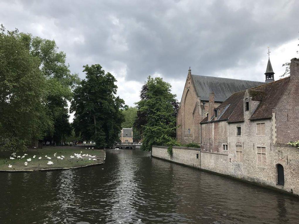 SMFR19  City Tour Bruges
