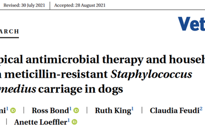 Staphylocoques résistants : importance des soins hygiéniques quotidiens